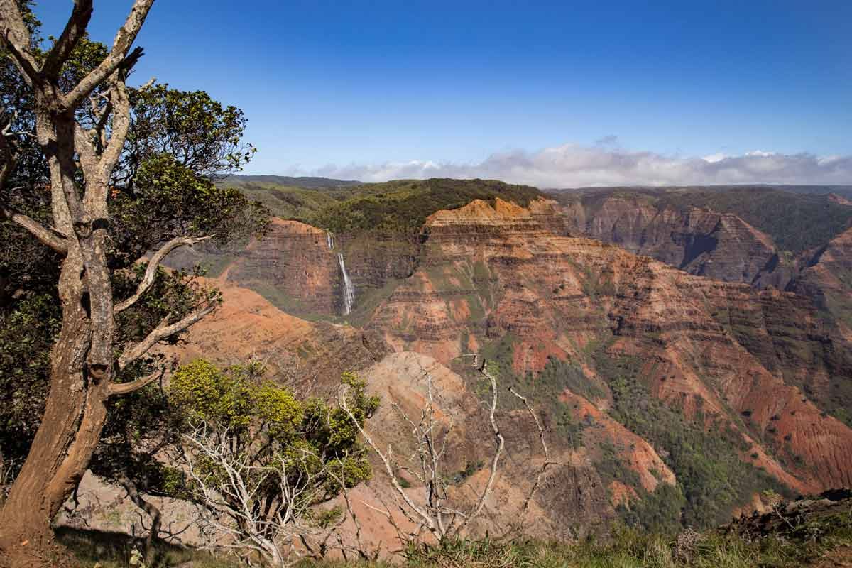 Travel Blog- Kauai & Molokai | via veggiechick.com